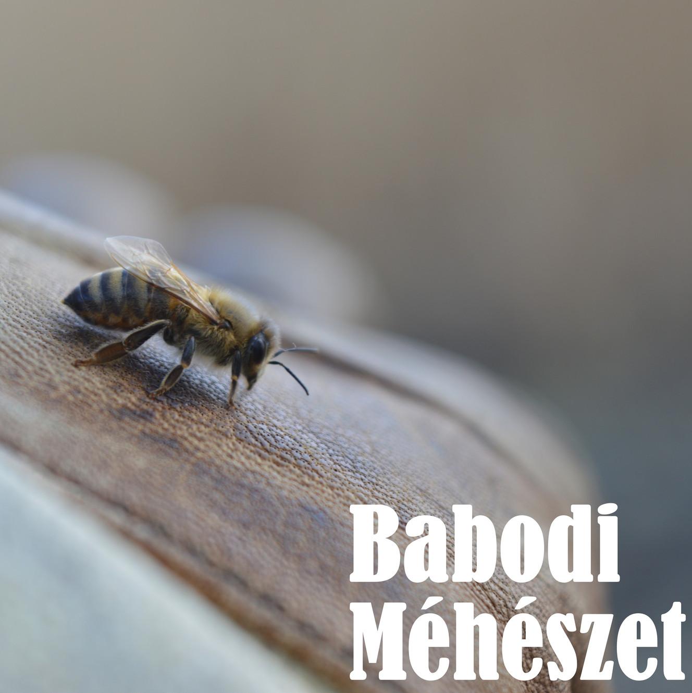 a mezei méh magas vérnyomás esetén történő alkalmazása kórházi kezelés magas vérnyomással