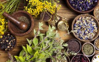 Az 5 leggyakoribb érrendszeri panasz kezelése gyógynövényekkel