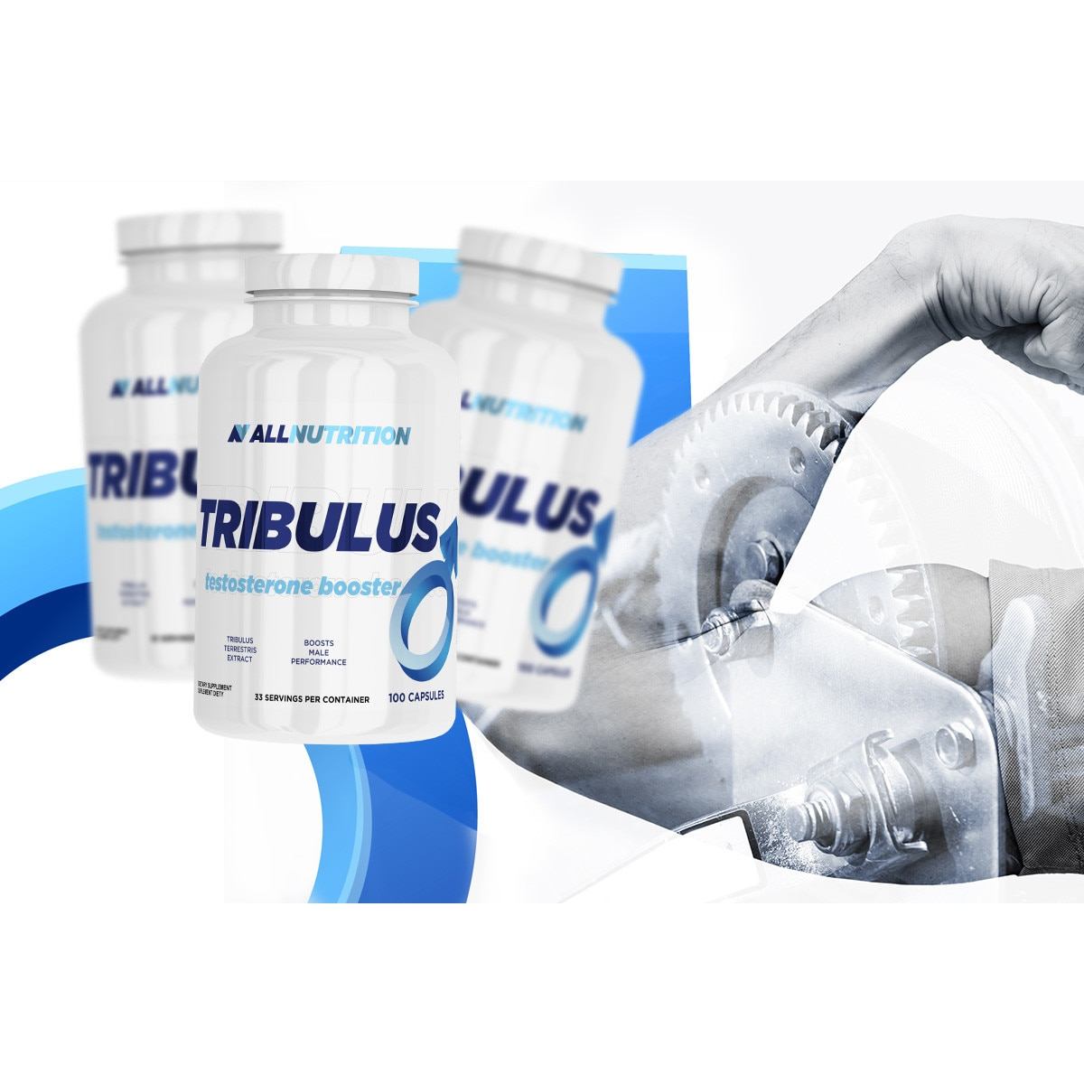 tribulus magas vérnyomás