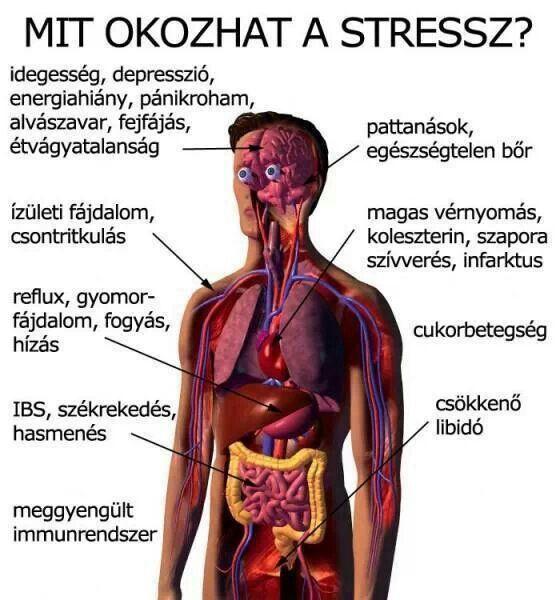 nyaki fájdalom magas vérnyomással)
