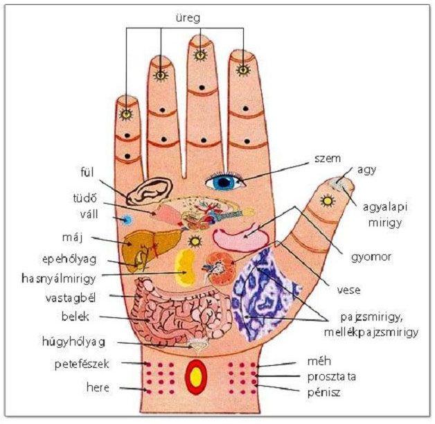magas vérnyomás és alternatív gyógyászat)