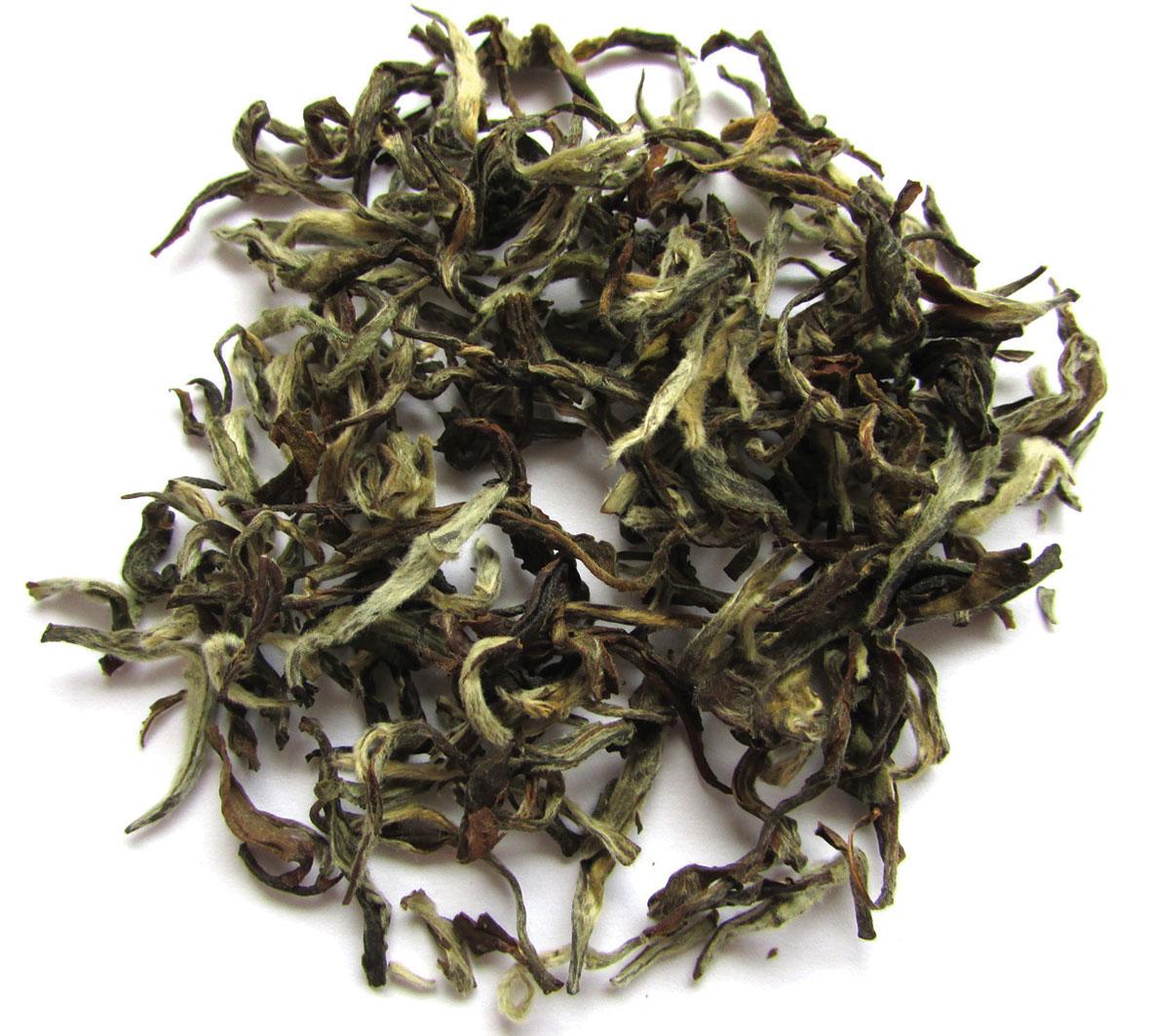 15 remek tea minden kórra, mindenkorra | Kanizsa Újság