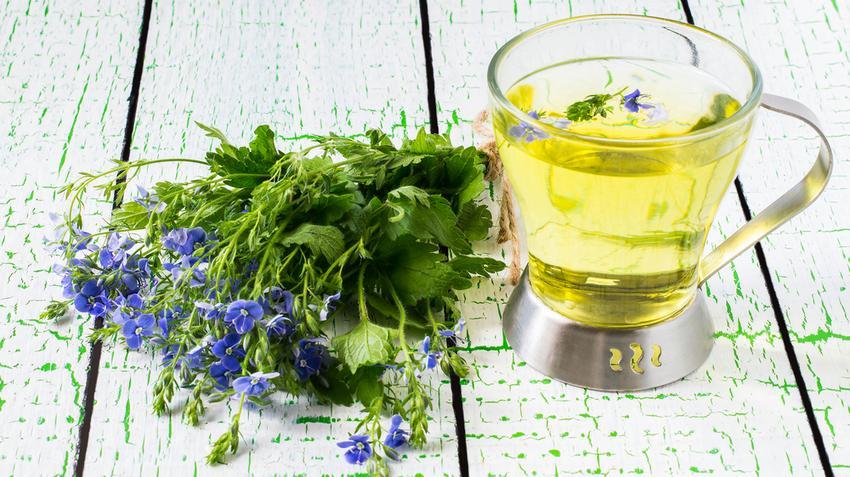 növény magas vérnyomás ellen hipertónia perifériás rezisztencia