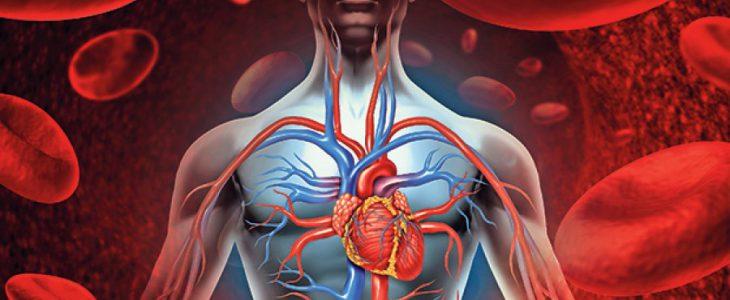magas vérnyomás és epekő alacsony pulzusszám magas vérnyomás kezeléssel