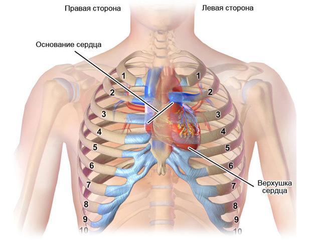 a szív magas vérnyomásával határos)
