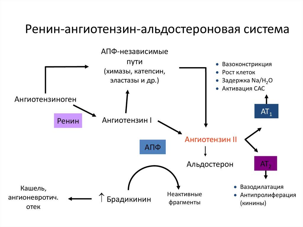 lorista n hipertónia kezelése