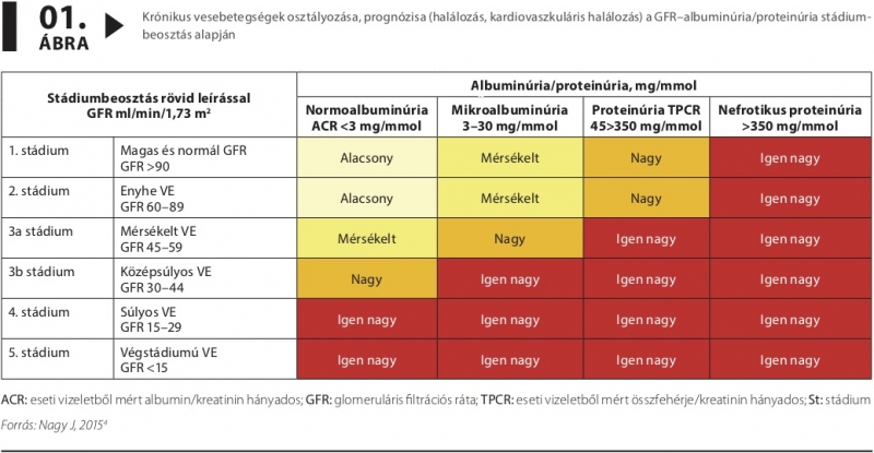 magas vérnyomás és krónikus vesebetegség)