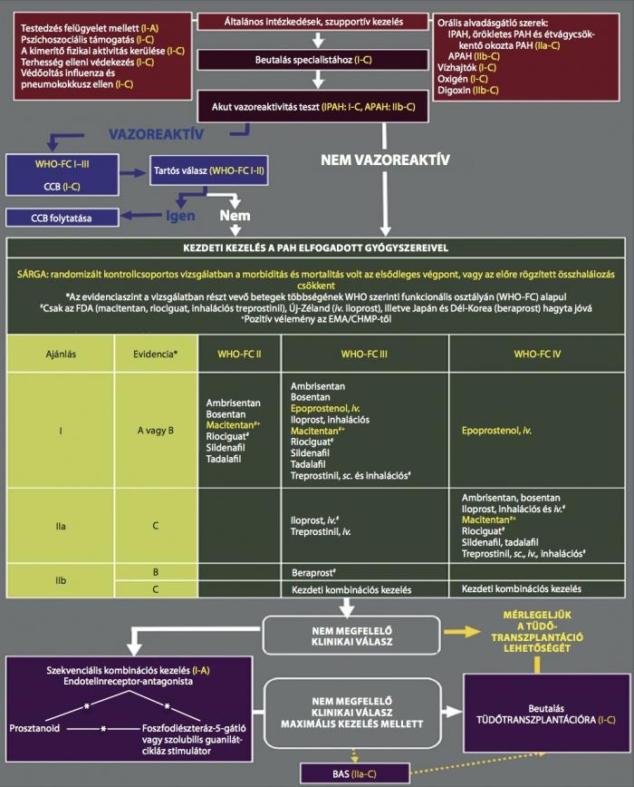 tüdő hipertónia gyógyszerek)