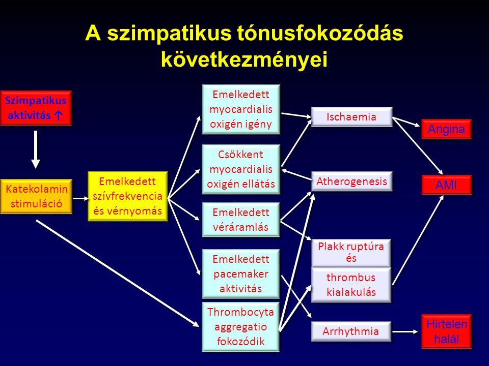magas vérnyomás és katekolaminok)