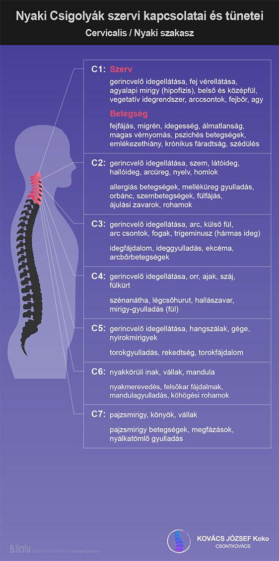 a magas vérnyomás kapcsolata a gerincvel