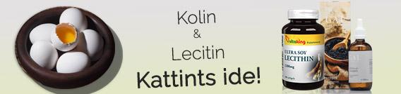 lecitin magas vérnyomás esetén)