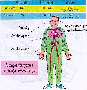magas vérnyomás rajz