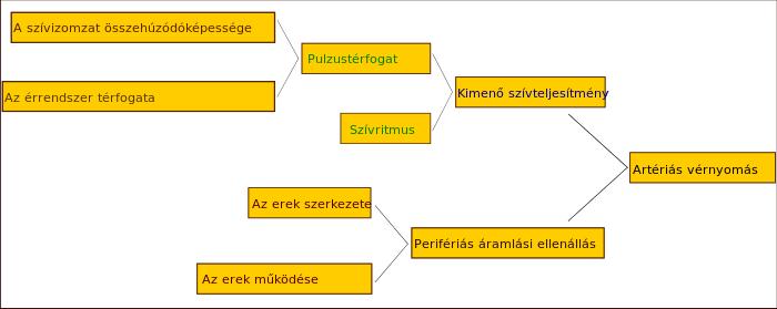 endokrin hipertónia diagnózisa)