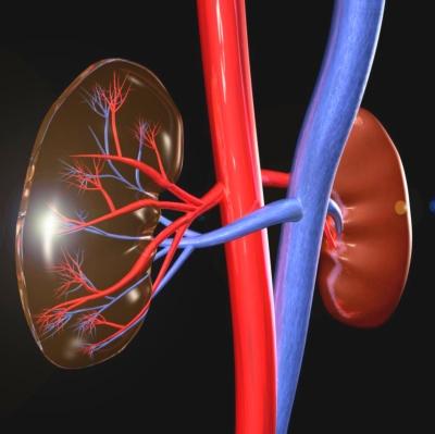 vesekárosodással járó magas vérnyomás astragalus és magas vérnyomás