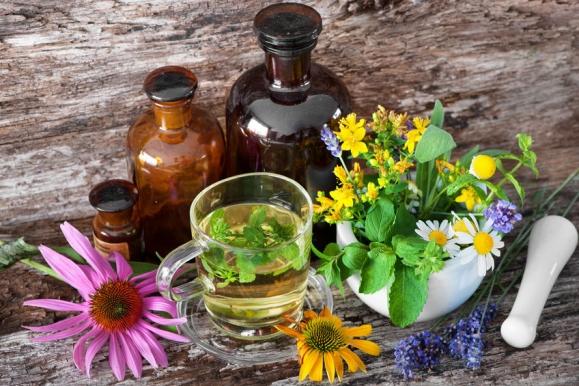 magas vérnyomás esetén alkalmazott növények)