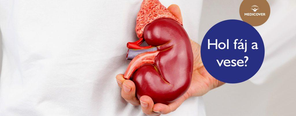 hirudoterápia magas vérnyomásért fórum magas vérnyomás 2 fok van-e fogyatékosság