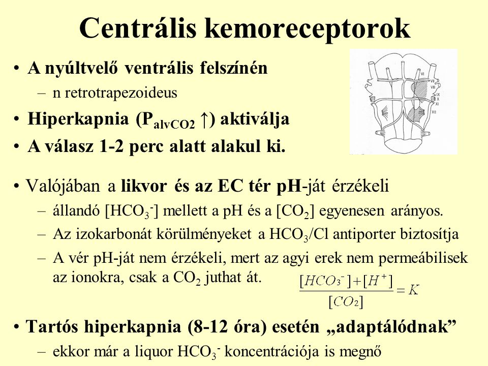 hiperkapnia magas vérnyomás)