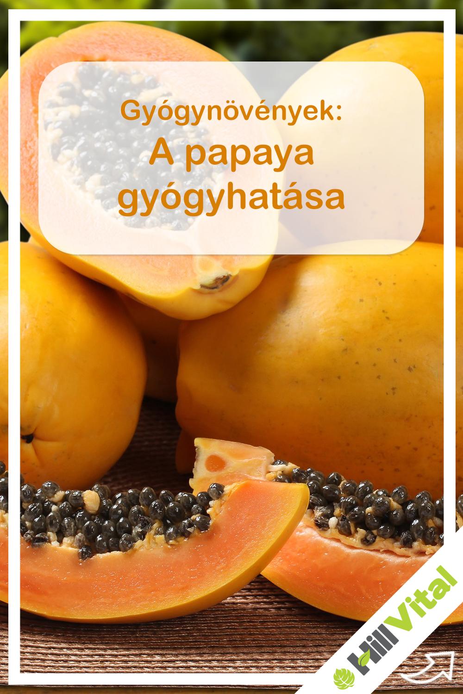 Magyar Narancs - Tudomány - lett, maradhat?