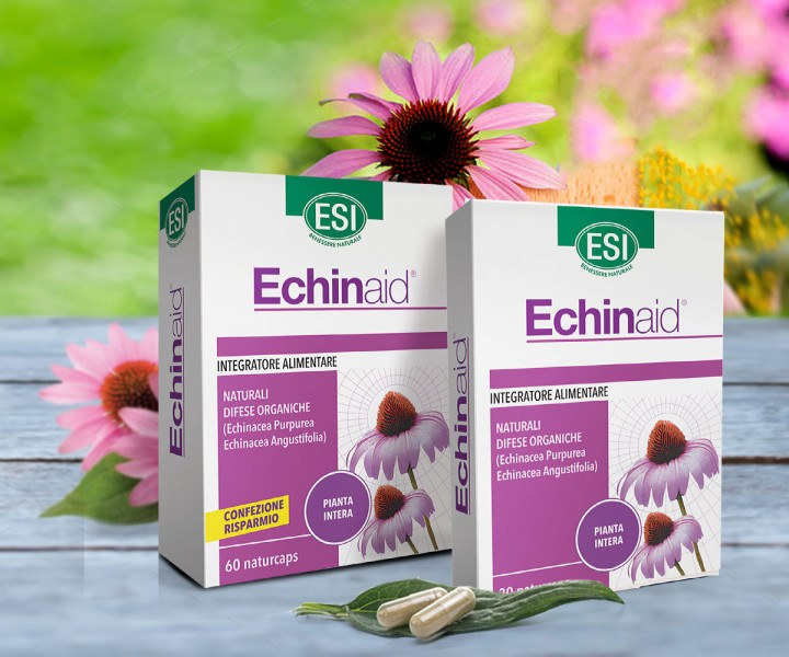 echinacea alkalmazása magas vérnyomás esetén