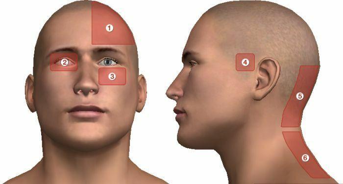 nyakszirt és magas vérnyomás a hipertónia tinktúrájának összetétele