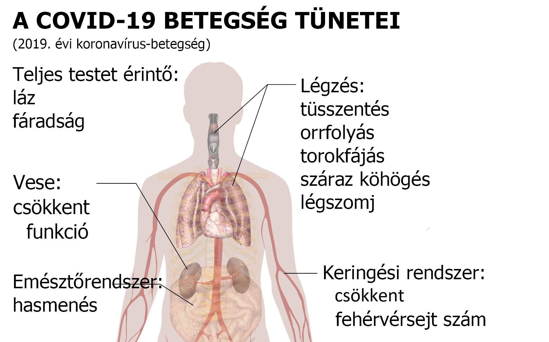 Magas vérnyomás: ezekről a tünetekről ismerheti fel
