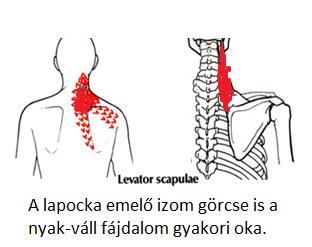 a csigolya artériák magas vérnyomása mi ez