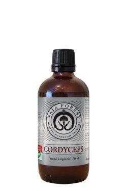 Cordyceps (Kínai hernyógomba)