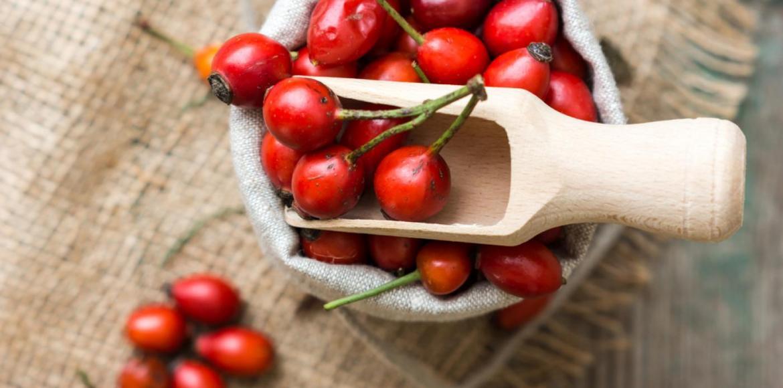 A csipkebogyó segít a magas vérnyomásban magas vérnyomás 2 fokú panaszai